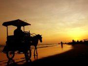 tempat destinasi wisata pantai parangtritis terbaik paling populer favorit sunset paralayang bantul yogyakarta tujuan arah lokasi pergi ke mana where to go liburan traveling dekat penginapan hotel