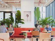 WeWork mengumumkan pengangkatan Balder Tol sebagai WeWork General Manager
